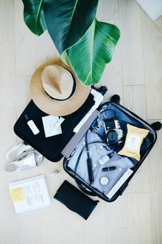 Reisetipps-Koffer